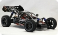 RACING BUGGY RAPTOR BRUSHLESS RTR 4WD
